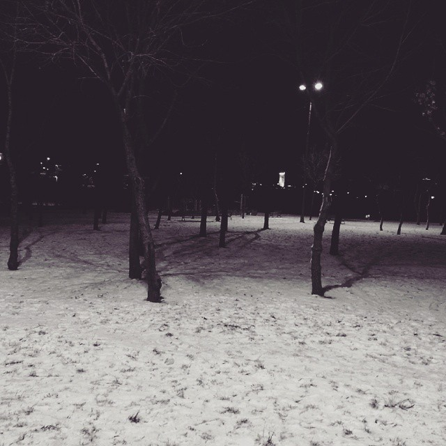 Snow #snow #winter #cold #holidays #tagsforlikes #snowing #blizzard #snowflakes #wintertime #staywarm #cloudy #instawinter #instagood #instaphoto #instalike #season #seasons #nature #tree #night #instagram