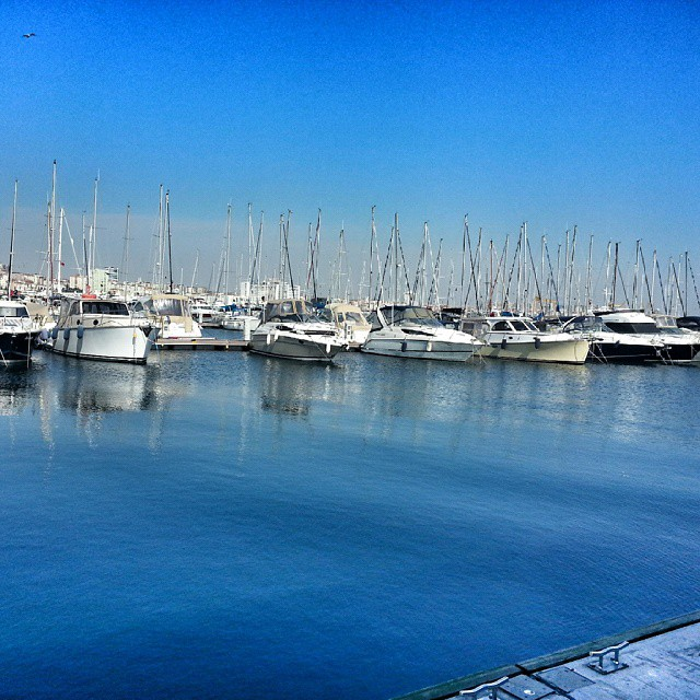 Marina #sea #marina #follow4like #followme #tagsforlikes #traveling #travel #instalike #instagram #look #like4like #turkeyday #turkeystagram #turkeyphotooftheday